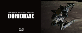 dorididae.jpg